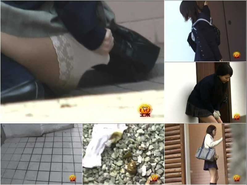 E42-02 | Schoolgirls disgraceful wetting and pantypooping in front of public lavatory. Part II