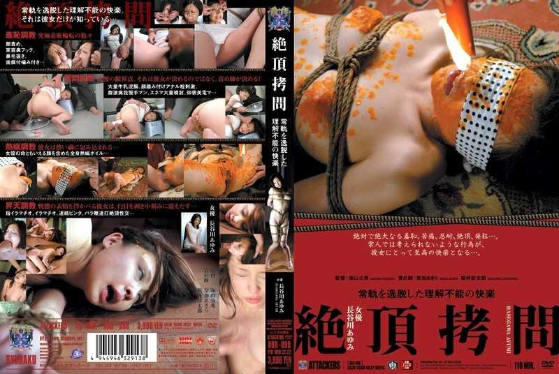 RBD-098 Ayumi Hasegawa Pleasure Of Torture Can Not Be Understood That Deviate From The Normal Course Capstone - Restraints, SM