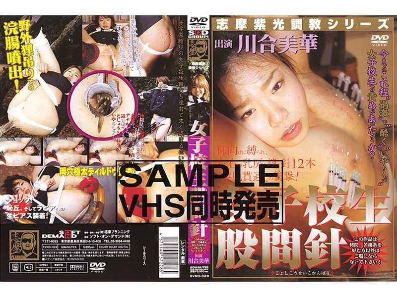 SVND-028 Torture Groin School Girls Light Purple Needle Series Shima - SM, Speculum