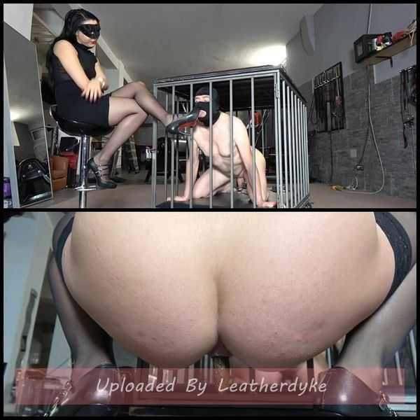 TRAINING MY NEW TOILET SLAVE Pt2 with MISTRESS GAIA  - scat porn, scatting domination,  Full HD 1080p | Release Year: December 14, 2017